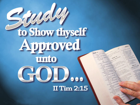 Neely's Bend Church Of Christ, Daily Bible Study